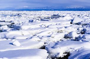 オホーツク海の流氷群の写真素材 [FYI04539298]