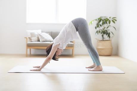 室内の床でストレッチをする女性の写真素材 [FYI04539696]