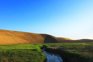 朝の鳥取砂丘の写真素材 [FYI04539869]