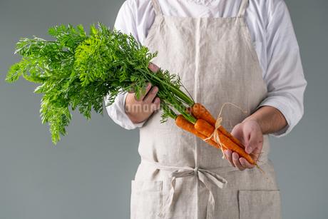 Bunch of fresh carrots in man's hands.の写真素材 [FYI04539880]