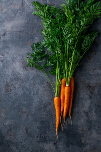 Fresh carrots on dark background.の写真素材 [FYI04539983]