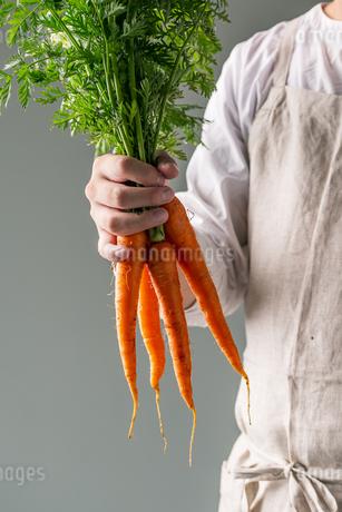 Bunch of fresh carrots in man's hand.の写真素材 [FYI04539986]