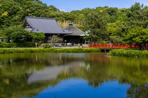 金沢八景の称名寺の写真素材 [FYI04540889]