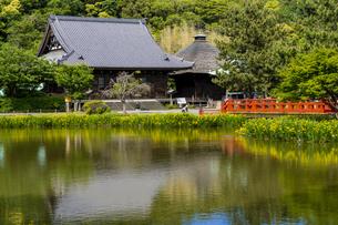 金沢八景の称名寺の写真素材 [FYI04540891]