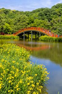 金沢八景の称名寺の写真素材 [FYI04540892]
