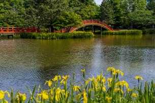金沢八景の称名寺の写真素材 [FYI04540899]