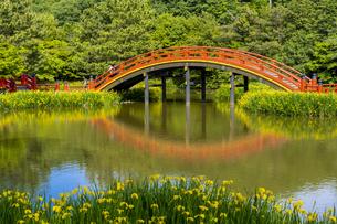 金沢八景の称名寺の写真素材 [FYI04540901]