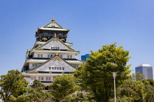晴天の大阪城の写真素材 [FYI04541256]