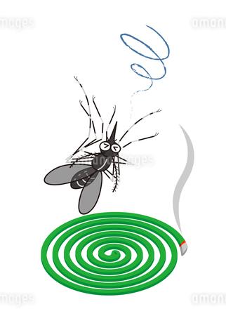 蚊取線香と蚊 (ヒトスジマジカ) イラストのイラスト素材 [FYI04541451]