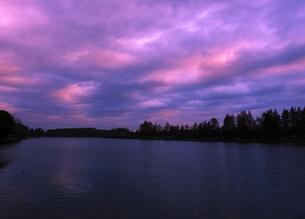 水元公園の朝焼け雲の写真素材 [FYI04542734]