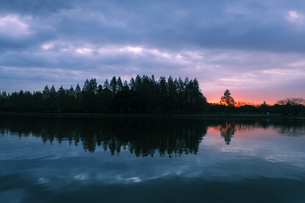 水元公園の夜明けの写真素材 [FYI04542736]