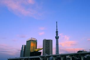 東京スカイツリーと夕焼け空の写真素材 [FYI04542739]