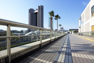 ペデストリアンデッキと幕張新都心の高層ホテルの写真素材 [FYI04542762]