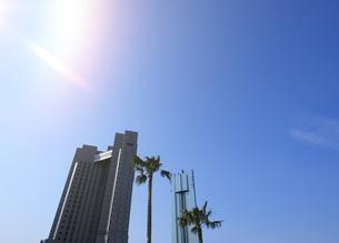 幕張新都心の高層ホテルとパームツリーの写真素材 [FYI04542766]