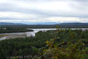 アラスカの森から望む夏の雪山の写真素材 [FYI04542913]