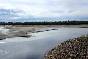 夏のアラスカ、湿地帯の浅瀬の写真素材 [FYI04542916]