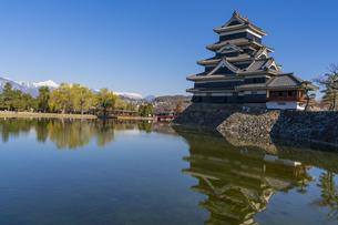 信州・春の松本城の写真素材 [FYI04542969]