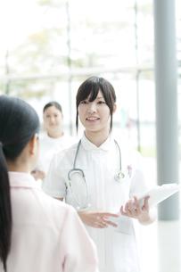 打合せをする看護師の写真素材 [FYI04543608]