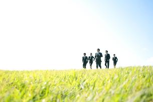草原を走るビジネスマンとビジネスウーマンの写真素材 [FYI04543765]