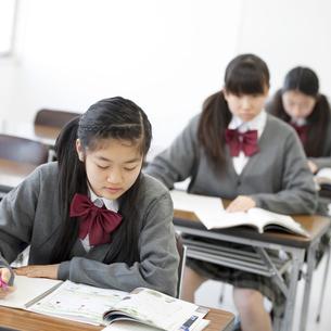 勉強をする中学生の写真素材 [FYI04544000]