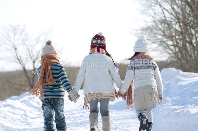 雪道を歩く子供たちの後姿の写真素材 [FYI04544230]