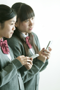 スマートフォンを操作する中学生の写真素材 [FYI04544490]
