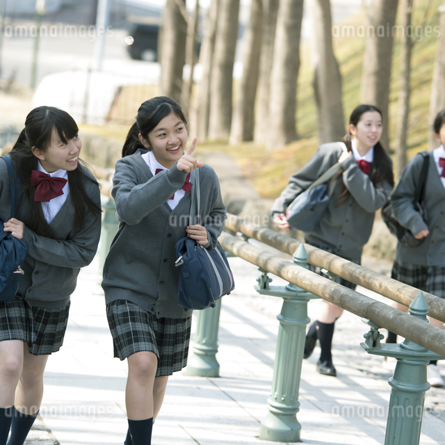 中学生の通学風景の写真素材 [FYI04544910]