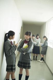 廊下で談笑をする中学生の写真素材 [FYI04544974]
