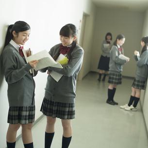 廊下で談笑をする中学生の写真素材 [FYI04544977]
