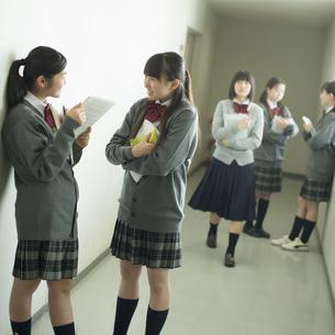 廊下で談笑をする中学生の写真素材 [FYI04544979]