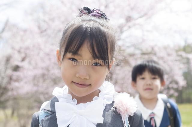桜の前で微笑む小学生の写真素材 [FYI04545022]