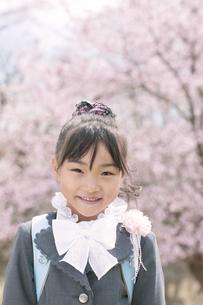 桜の前で微笑む小学生の写真素材 [FYI04545029]