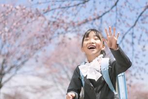 桜の前で手を振る小学生の写真素材 [FYI04545057]