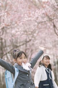 桜の前で両手を挙げる小学生の写真素材 [FYI04545071]