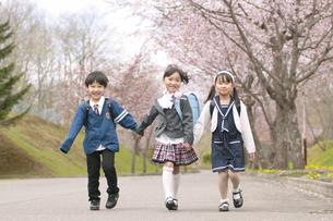 桜並木道を歩く小学生の写真素材 [FYI04545085]