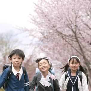 桜の前で微笑む小学生の写真素材 [FYI04545089]