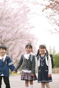 桜並木道で微笑む小学生の写真素材 [FYI04545104]