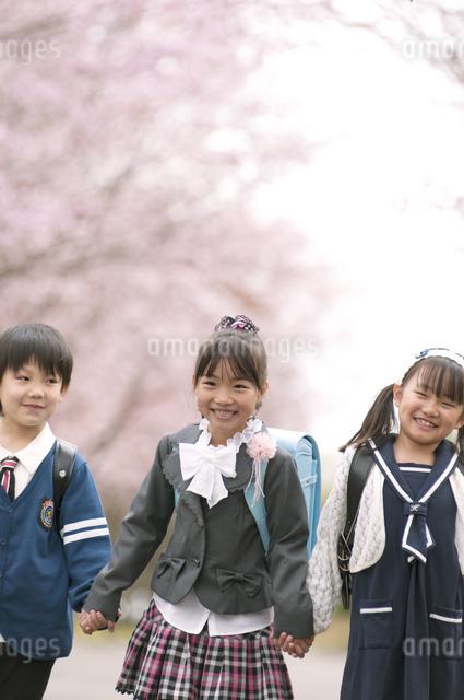 桜並木道で微笑む小学生の写真素材 [FYI04545105]