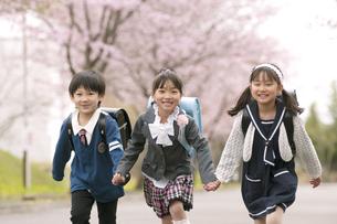 桜並木道を走る小学生の写真素材 [FYI04545110]