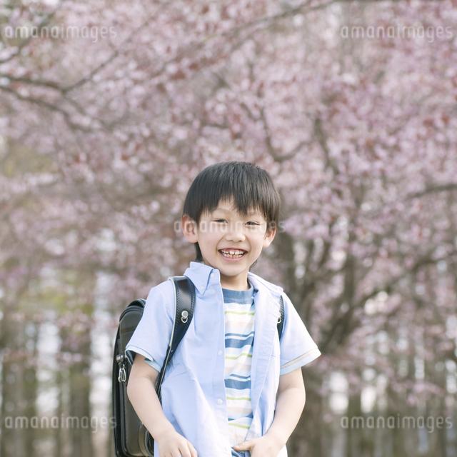 桜の前で微笑む男の子の写真素材 [FYI04545112]