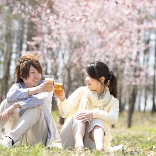 ビールで乾杯をするカップルの写真素材 [FYI04545165]