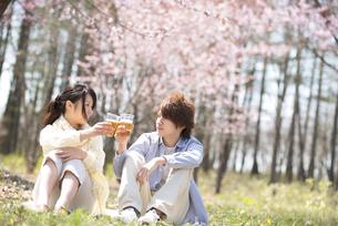 ビールで乾杯をするカップルの写真素材 [FYI04545168]