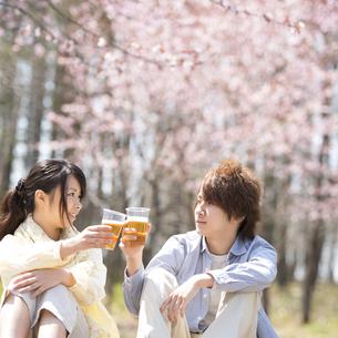 ビールで乾杯をするカップルの写真素材 [FYI04545172]