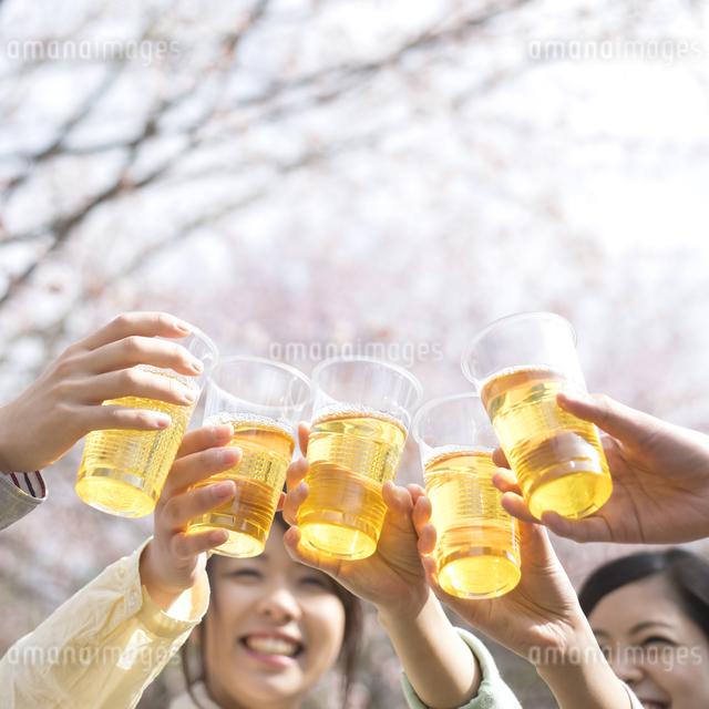 乾杯をする若者たちの写真素材 [FYI04545211]