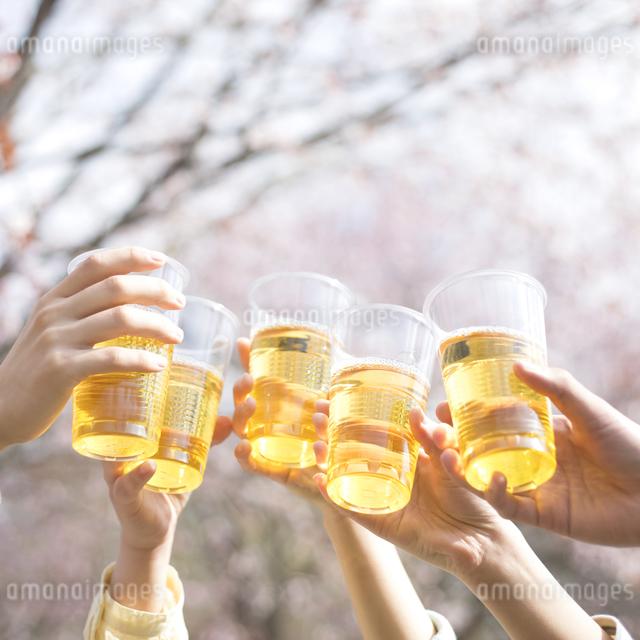 乾杯をする若者たちの手元の写真素材 [FYI04545215]