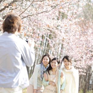 桜の前で記念写真を撮る3人の女性の写真素材 [FYI04545245]
