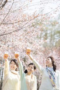 乾杯をする3人の女性の写真素材 [FYI04545258]