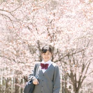 桜の前で微笑む中学生の写真素材 [FYI04545288]