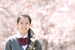 桜の前で微笑む中学生の写真素材 [FYI04545302]