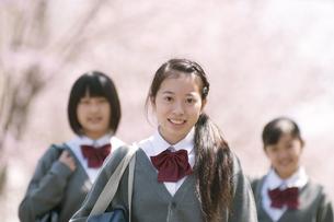 桜の前で微笑む中学生の写真素材 [FYI04545359]